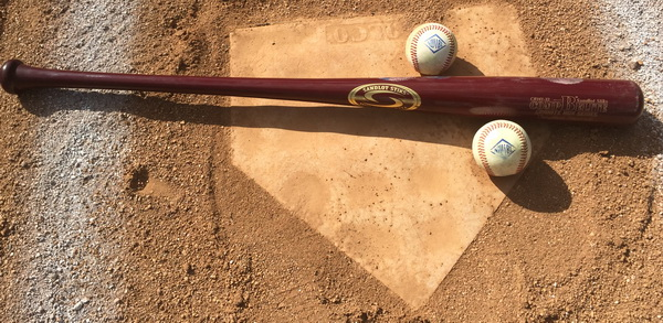 American Beech Wood Baseball Bat Hmoe Run Derby won By Rick Baughman 2015
